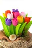 Цветастый тюльпан на flowerpod в мешке Стоковые Фото