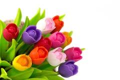 Цветастый тюльпан Стоковые Фото