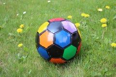 Цветастый футбольный мяч в поле травы с одуванчиками Стоковое Изображение