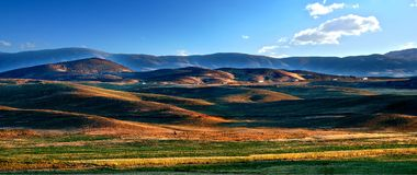 цветастый холм Стоковое фото RF