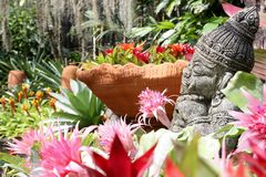 цветастый цветок Стоковое Фото