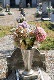 цветастый шелк цветка Стоковое Фото