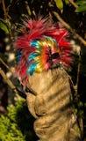 цветастый шлем Стоковые Изображения