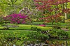 Цветастый японский сад Стоковые Изображения