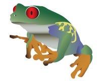 цветастый eyed красный цвет лягушки Стоковые Изображения