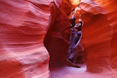 цветастый footpath подземный Стоковая Фотография RF