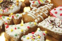 цветастый gingerbread печений Стоковое Фото