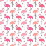 Цвета безшовных фламинго картины графических различные розовые бесплатная иллюстрация