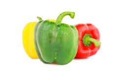 Цвета болгарского перца 3 Стоковое Фото