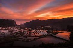 Цвета восхода солнца Стоковое Изображение