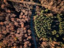 Цвета захода солнца Германии природы трутня стоковое изображение