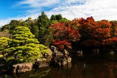 цвета листвы осени в Himeji Стоковые Изображения
