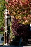 Цвета осени в Канаде стоковое изображение