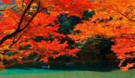 Цвета осени в Киото Стоковые Фото