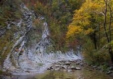Цвета осени в ущелье реки Cuago Стоковое фото RF