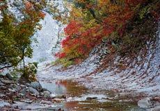Цвета осени в ущелье реки Cuago Стоковое Фото