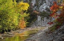 Цвета осени в ущелье реки Cuago Стоковые Фото