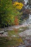 Цвета осени в ущелье реки Cuago Стоковые Фотографии RF