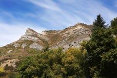 Цвета осени над лесом горы Стоковая Фотография