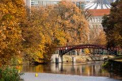 Цвета осени рекой Стоковое Изображение