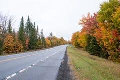 Цвета падения в Северной Америке стоковые фотографии rf