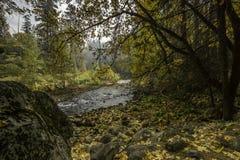 Цвета падения долины Yosemite вдоль реки Merced стоковая фотография rf