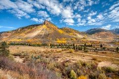 Цвета падения над 8000 футами в высоте около Silverton Колорадо стоковая фотография rf