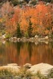 Цвета падения в горах Калифорнии Сьерры Стоковые Фотографии RF