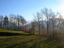 Цвета падения в Graubuenden Стоковые Изображения RF