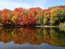 Цвета падения отражая на Миссиссипи Стоковая Фотография