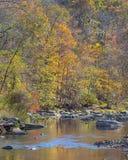 Цвета падения, река Patapsco, след речных порогов, рекреационная зона McKeldin, парк штата долины Patapsco, MD стоковая фотография rf