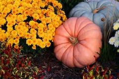 Цвета предпосылки осени Стоковое Фото