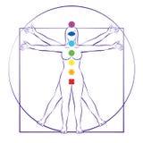 Цвета радуги женщины Vitruvian женского тела Chakras иллюстрация штока