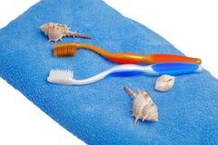 2 цвета различн зубной щетки на изолированном полотенце Стоковое Фото