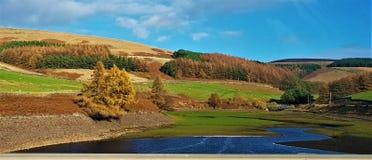 Цвета сельской местности стоковая фотография rf