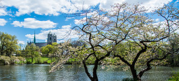 Цветене весны стоковое изображение