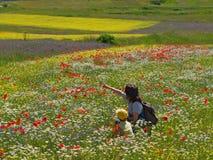 цветене вполне Стоковые Фото