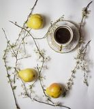 Цветене груш с чашкой кофе Стоковая Фотография RF
