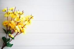 Цветение весны над деревянной предпосылкой Стоковая Фотография