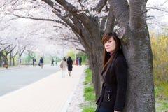 Цветение вишни с женщиной Стоковые Фотографии RF