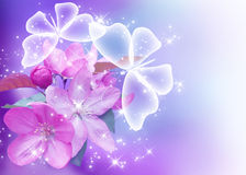 Цветение и бабочки Сакуры Стоковая Фотография