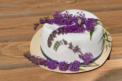 Цветение куста бабочки на шляпе лета на саде. Стоковые Фото