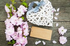 Цветение Сакуры с сердцем Стоковое фото RF