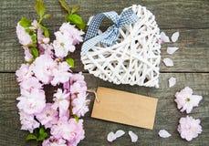 Цветение Сакуры с сердцем Стоковая Фотография RF