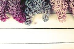 Цветение сирени на деревенской деревянной предпосылке с Стоковое фото RF