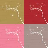 Цветение сливы с линией дизайном Стоковые Фото