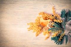 Цветение цветка мимозы, цыпленок войлока и пасхальные яйца на деревянной предпосылке имеющееся приветствие архива пасхи eps карто Стоковое фото RF