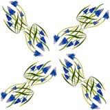 Цветение цветка Muscari засаживает картину акварели на белом backgr Стоковые Фотографии RF