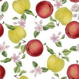Цветение яблока акварели цветет безшовная картина Стоковые Изображения