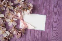 Цветение Яблока и пустая тетрадь для текста на деревянной предпосылке скопируйте космос Стоковое фото RF